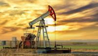 برميل النفط يتجاوز 80 دولاراً بارتفاع غير مسبوق