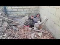 أمام محافظ العاصمة: ستيني تقطعت به السبل بلا مأوى (فيديو)