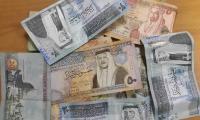 13 مليون دينار القروض الزراعية الممولة