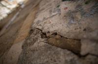 """حفريات الإحتلال تهدد حي """" باب السلسلة """" بخطر الإنهيار (صور)"""