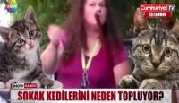 """فيديو يثير صدمة ..  تركية تصيد القطط وتحولها """"شاورما"""" للسوريين !"""