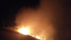 الرمثا: حريق يلتهم 40 دونما من الاعشاب الجافة واشجار الزيتون