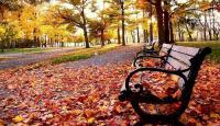 اجواء معتدلة ومستقرة مع بدء فصل الخريف