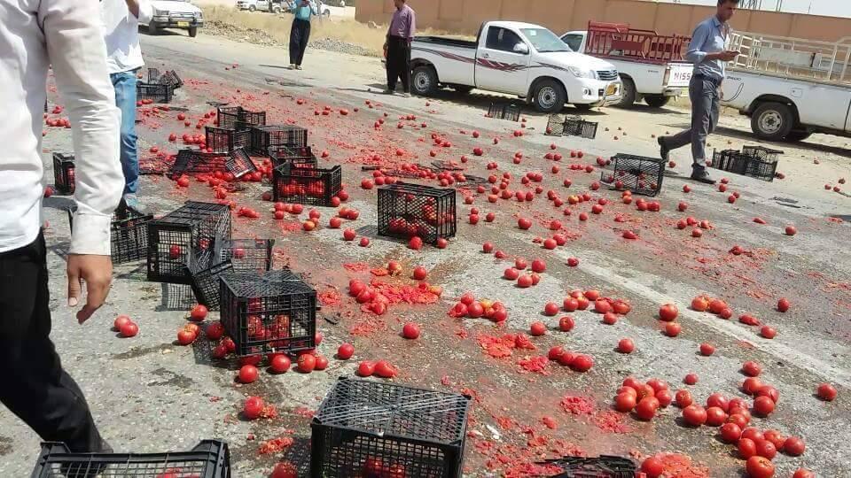 أزمة مصرية بسبب البندورة الأردنية image.php?token=8472da5c7250362ada747a537728bb01&size=