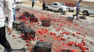 أزمة مصرية بسبب البندورة الأردنية