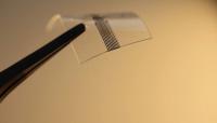 ابتكار شريحة إلكترونية تزرع في الدماغ لعلاج الشلل (صور)