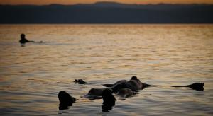 زائرون يشيدون بخدمات السياحة العلاجية بالبحر الميت