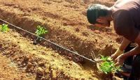 تعليمات لشروط وتدابير السلامة بالمنشآت الزراعية