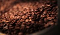 هل القهوة مفيدة للصحة؟