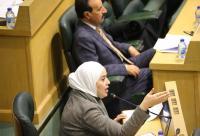 """""""النواب"""" يواصل مناقشة """"الشراكة بين القطاعين العام والخاص"""" (صور)"""