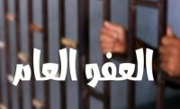 وزير اسبق يهاجم العفو العام ..