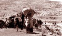 """""""هآرتس"""": """"الإسرائيليون"""" غير راغبين في معرفة ما جرى في 1948"""