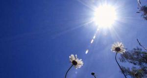هل تستمر الأجواء الصيفية اللطيفة خلال الاسبوع الحالي؟