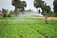 تعليمات جديدة للتفتيش على الأنشطة الزراعية