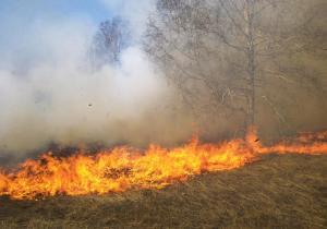 عبث أطفال يتسبب بحريق 8 دونمات في عجلون