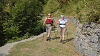 كم خطوة علينا السير يوميا للحفاظ على صحتنا ؟