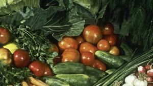 مواد غذائية تقي من السرطان