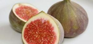لماذا يرفض النباتيون تناول ثمار التين؟