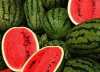 إعفاء بذور البطيخ والشمام من الضريبة