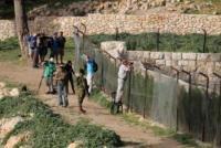 مستوطنون يقتحمون برك سليمان في بيت لحم
