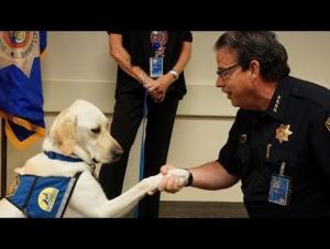 كلب أميركي يؤدي اليمين الدستورية للشرطة (فيديو)