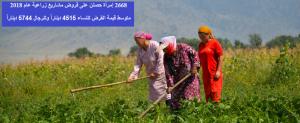 2668 إمرأة حصلن على قروض مشاريع زراعية بـ 12 مليون دينار