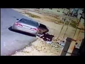 """الزرقاء: شبان يسرقون اغنامناً بطريقة """"غريبة"""" (فيديو)"""