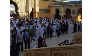 الخارجية تتابع حالة عائلة أردنية تعرضت لحادث سير في دبي