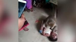 قرد يخطف طفلا من والديه ! (فيديو)