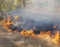 بالونات غزة تحرق 300 دونم من المستوطنات