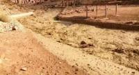 """فقدان ثلاثة سياح """"إسرائيليين"""" في البتراء"""