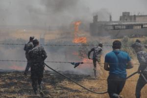 حريق يلتهم مساحة واسعة من الاعشاب والمحاصيل الزراعية (صور)