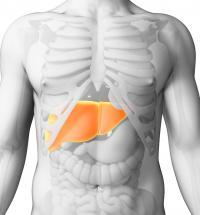 4 أعراض تكشف إصابتك بـ مشاكل خطيرة في الكبد