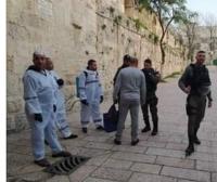 قوات الاحتلال تعتقل 4 مقدسيين خلال تعقيمهم منطقة باب الاسباط