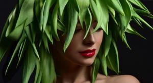 وصفات عشبية ومتوفرة للحصول على شعر أكثر صحة وكثافة
