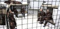 إصابة أسيرين في سجون الاحتلال بكورونا