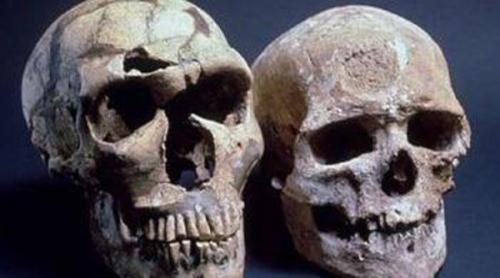 جمجمة طفل بدائي تكشف حقائق عن التطور البشري!