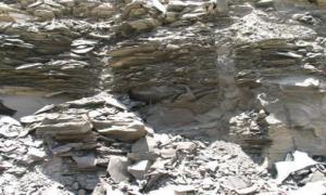الأردن يمتلك رابع احتياطات العالم بالزيت الصخري