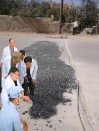 نقل تجربة الاردنيين بالمطبات لكوريا الشمالية