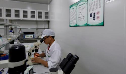 شراكة فرنسية برازيلية لإنتاج لقاح مضاد لزيكا
