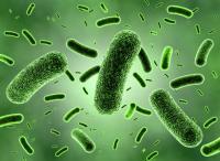 بكتيريا تسبب التسمم الغذائي ..  تعرّف عليها