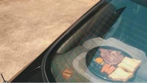 ايلاندي يطهو وجبة بأشعة الشمس داخل سيارته (صور)