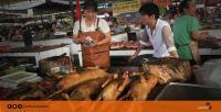 الصين تحظر أكل لحوم القطط والكلاب بسبب الكورونا