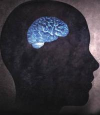 احذر ..  هذه المهن ستقلص حجم دماغك