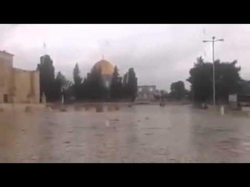 أمطار غير مسبوقة على باحات المسجد الأقصى Image