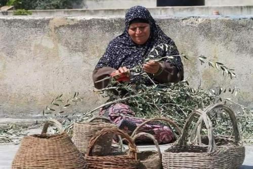 فلسطينيات يصنعن من أغصان الزيتون أواني وسلالا