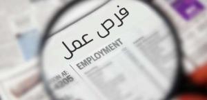 8803 وظائف للعام الحالي بكافة المؤسسات الحكومية