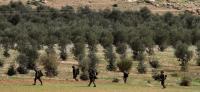 الاحتلال يعزز قواته بغور الإردن قبيل إعلان صفقة القرن