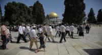 مجلس أوقاف القدس : لا يحق لليهود الصلاة بالأقصى