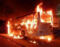 حريق يلتهم الباصات في ولاية كاليفورنيا (فيديو)